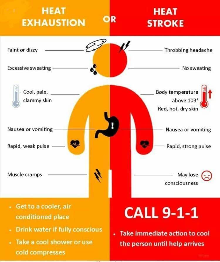 Symptoms of heat stroke and heat exhaustion can be similar. (Contributed Graphic/Agassiz Fire Department)